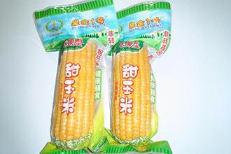 玉米给袋式真空包装机的优势特点