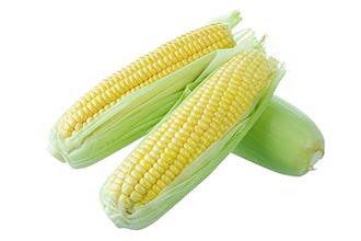 玉米真空包装流程介绍 玉米真空包装注意事项